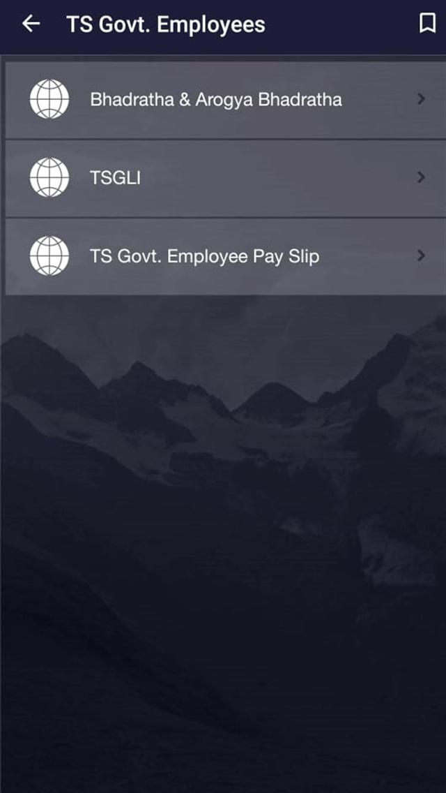 Govt Employee Pocket