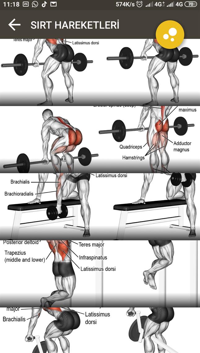 Fitness Listem