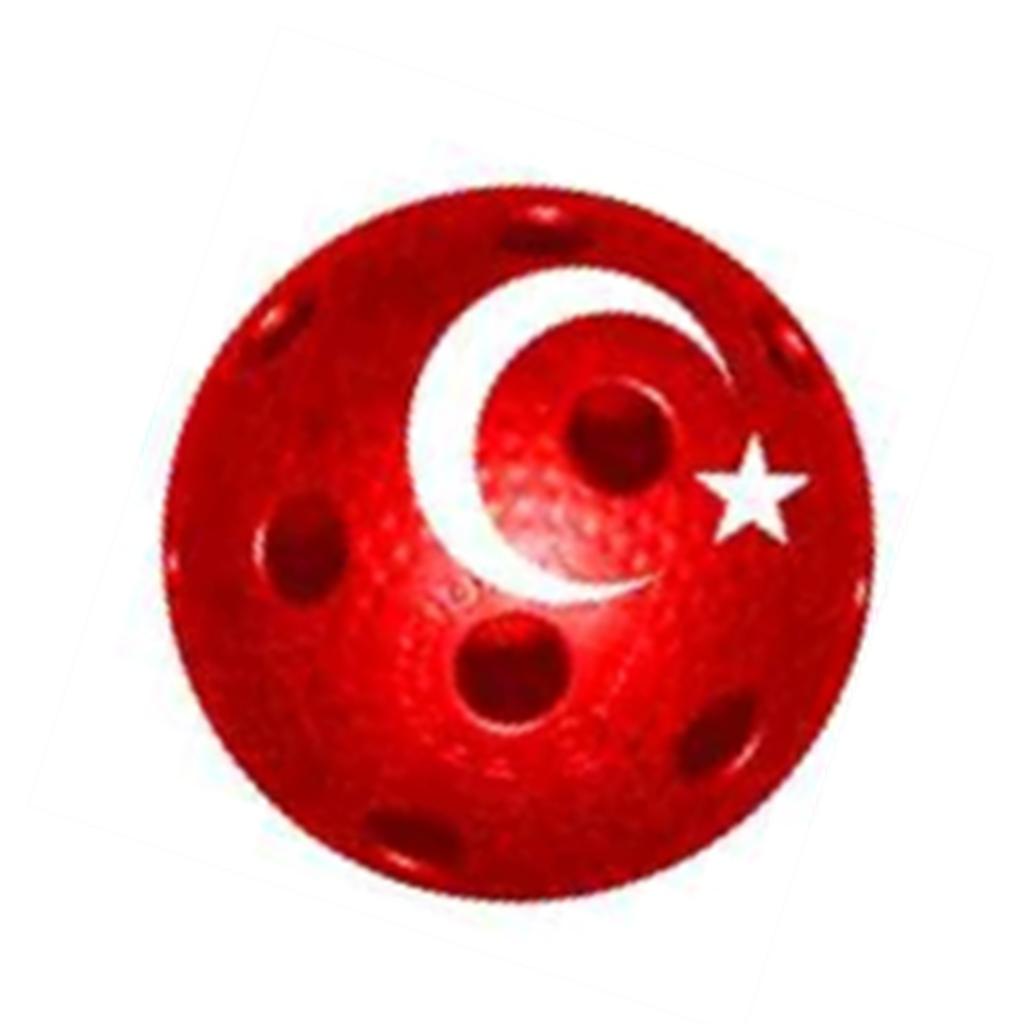 Florbol Türkiye