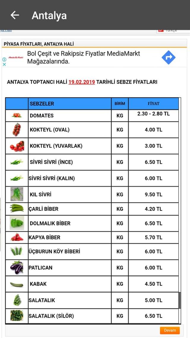 Akdeniz Hal Fiyatları
