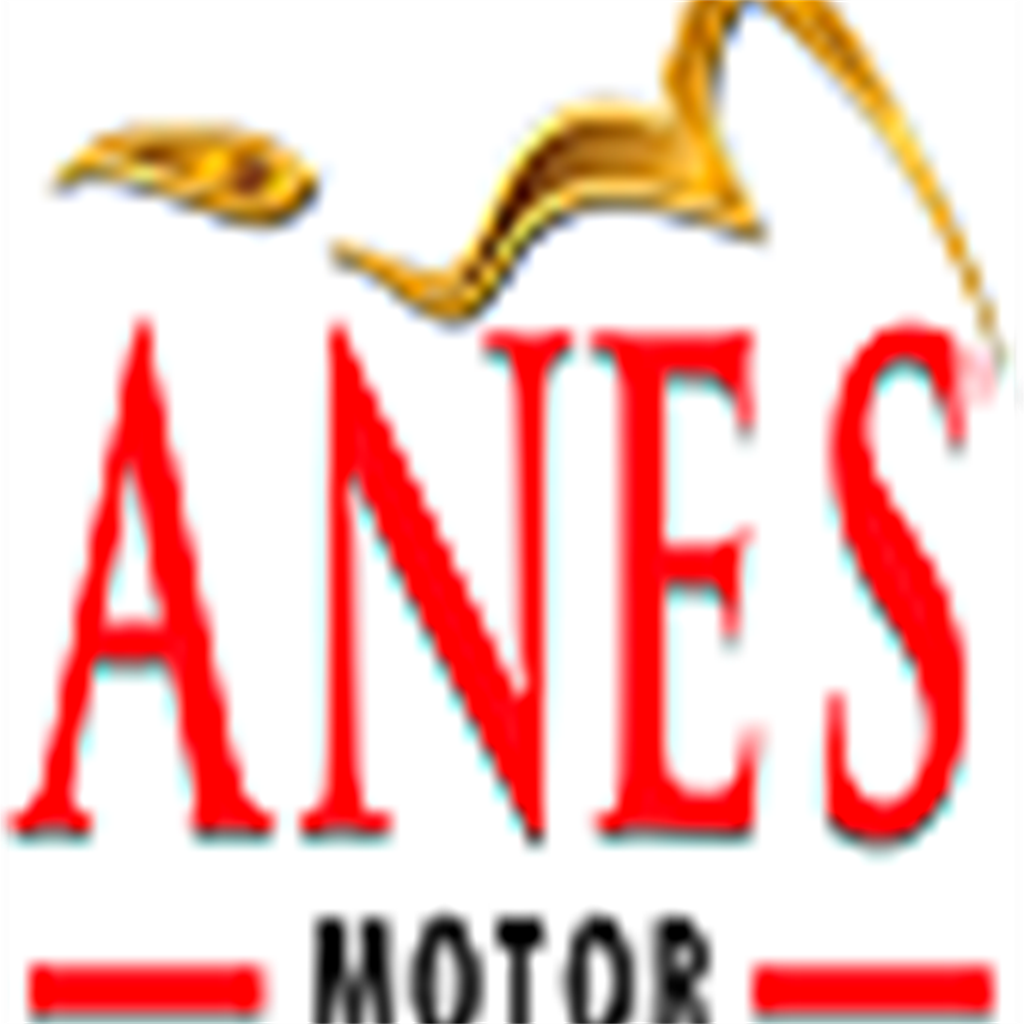 ANES MOTOR