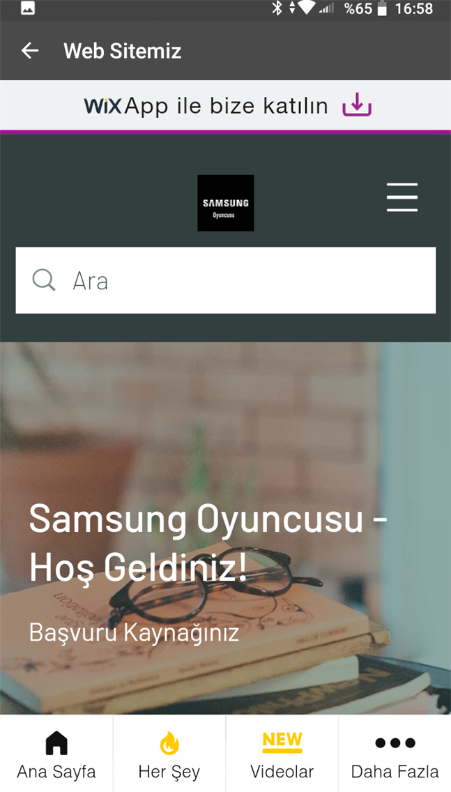 Samsung Oyuncusu