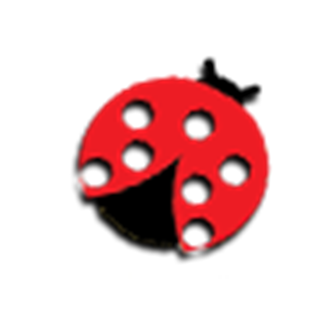 coccinella pasta evi