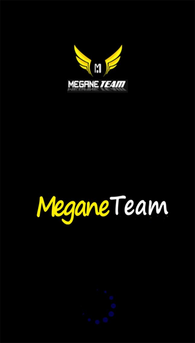 Team Mobil