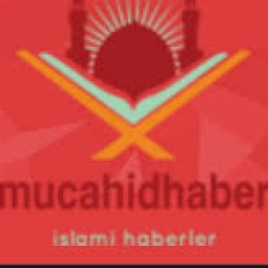 mucahidhaber