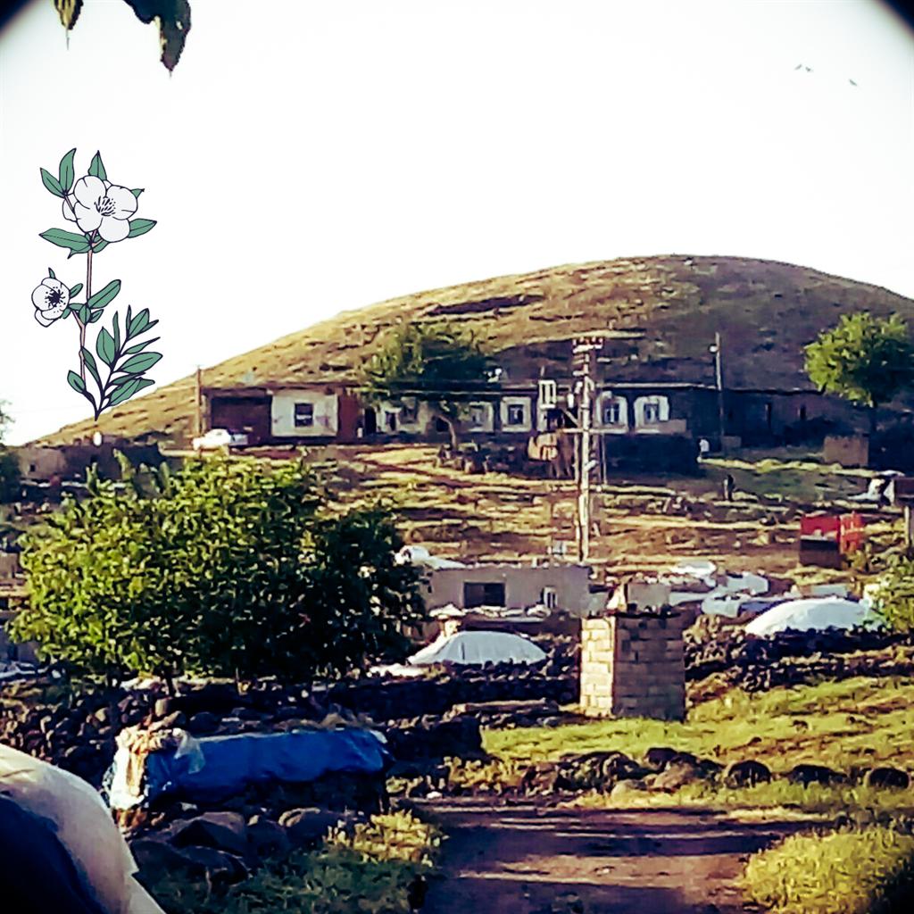 Dönemeç Köyü