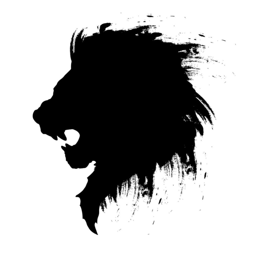 Lionpocket