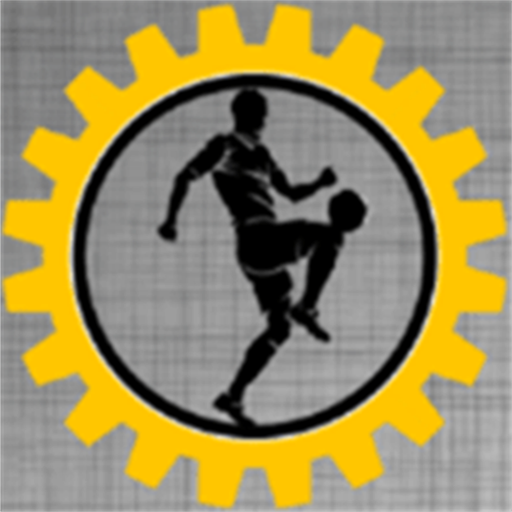 Organize Futbol