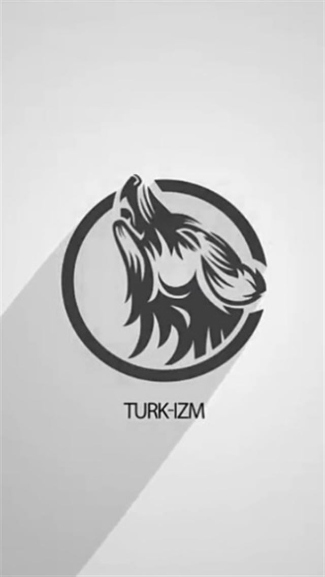 Türk-izm