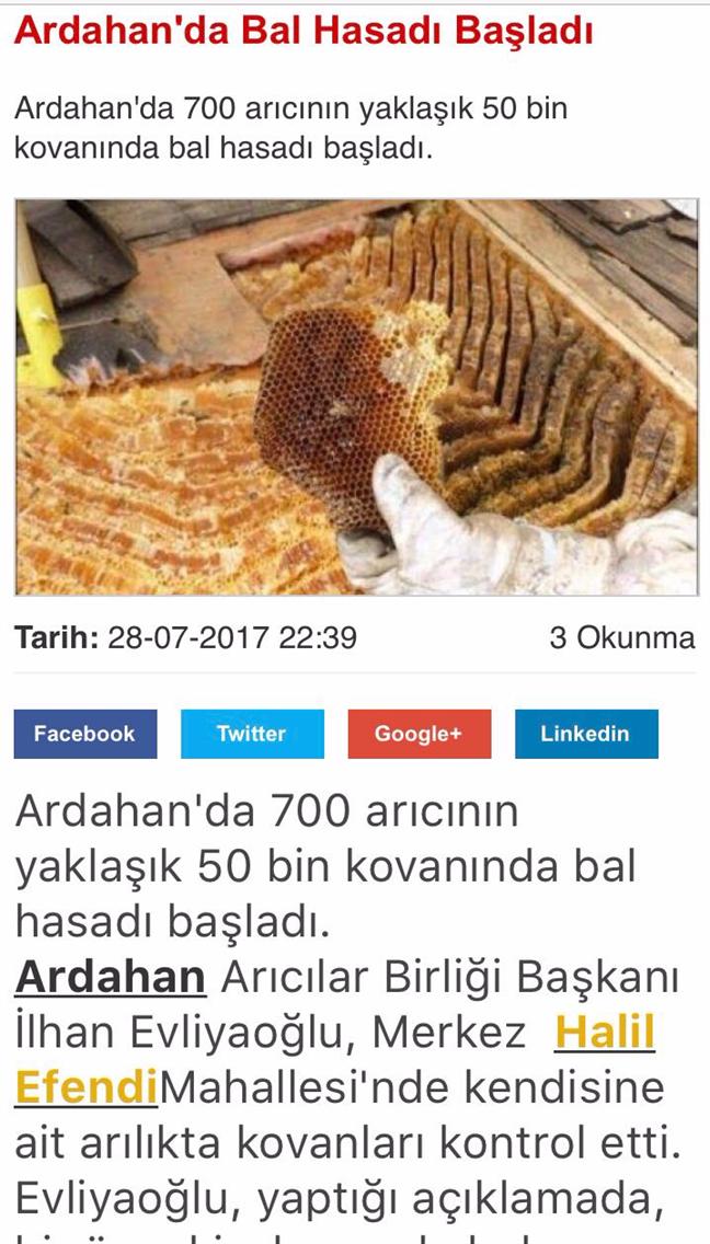 cildirmedya.com