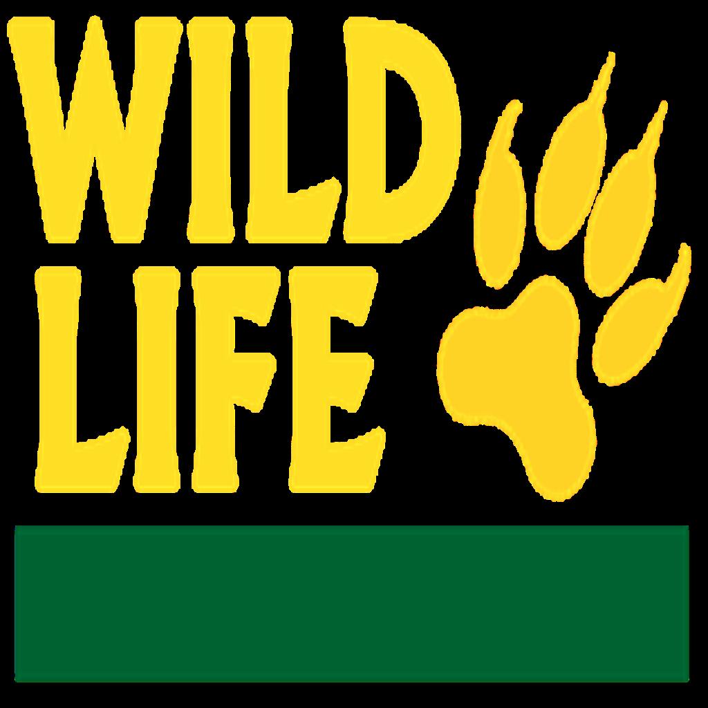 Wild LifeTV