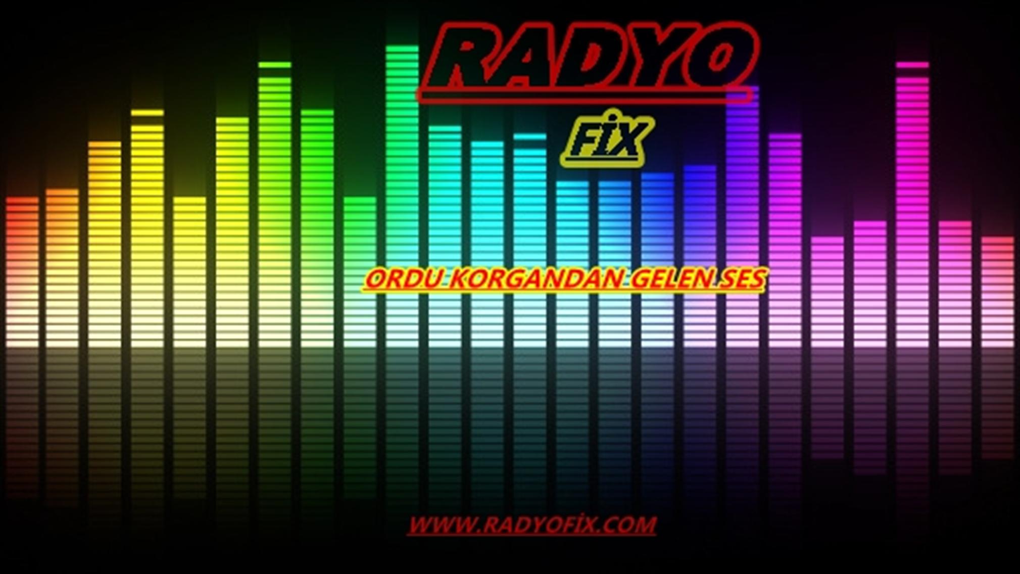 radyofixkorgan