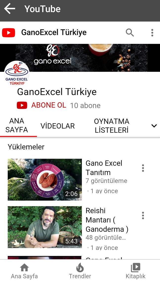Ganoexcel Login