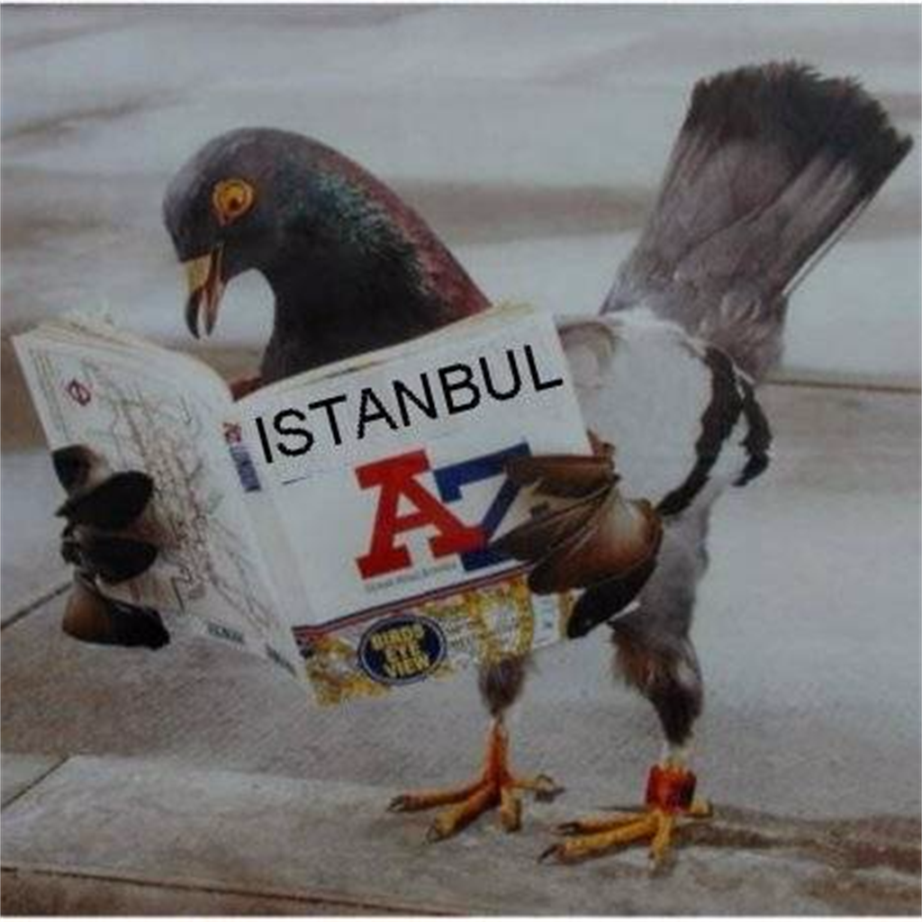 THE ISTANBUL