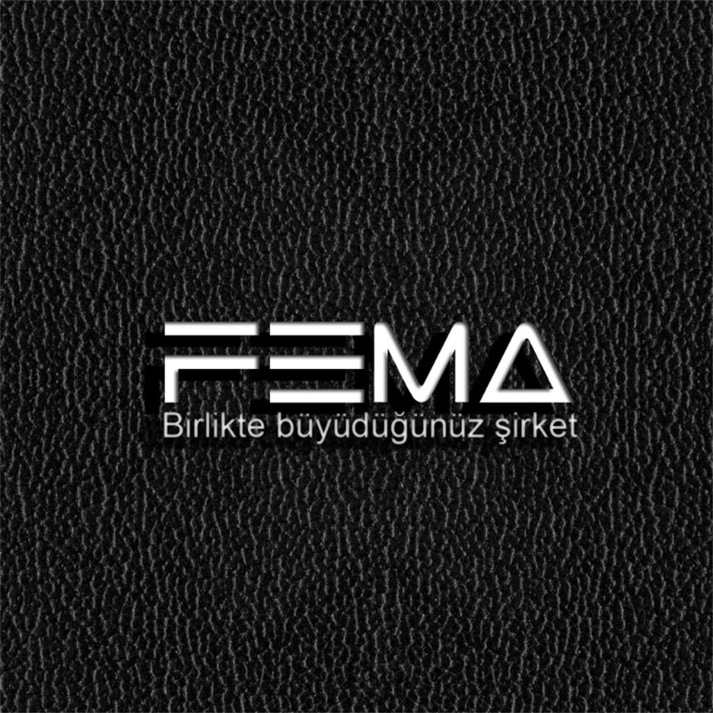 FEMA Radyo ve Habercilik