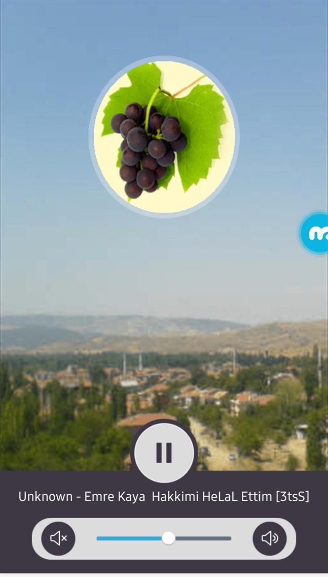 Radyo Bağkonak - Daima