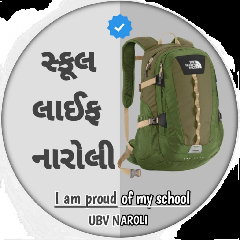 UBV school naroli