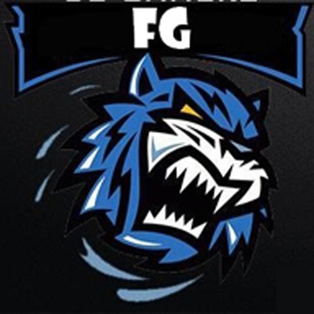 FG GaminG
