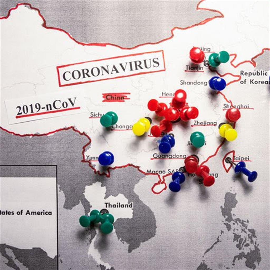 Corona Virüsü Anlık Gelişme