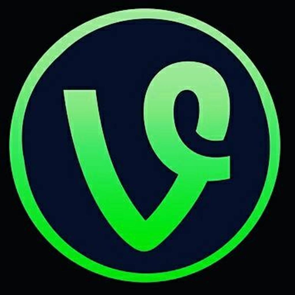 Beykoz_Vine