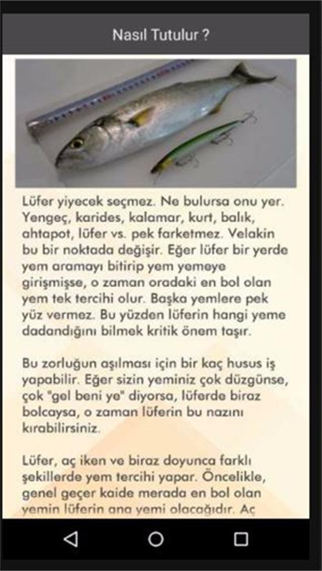 Lüfer