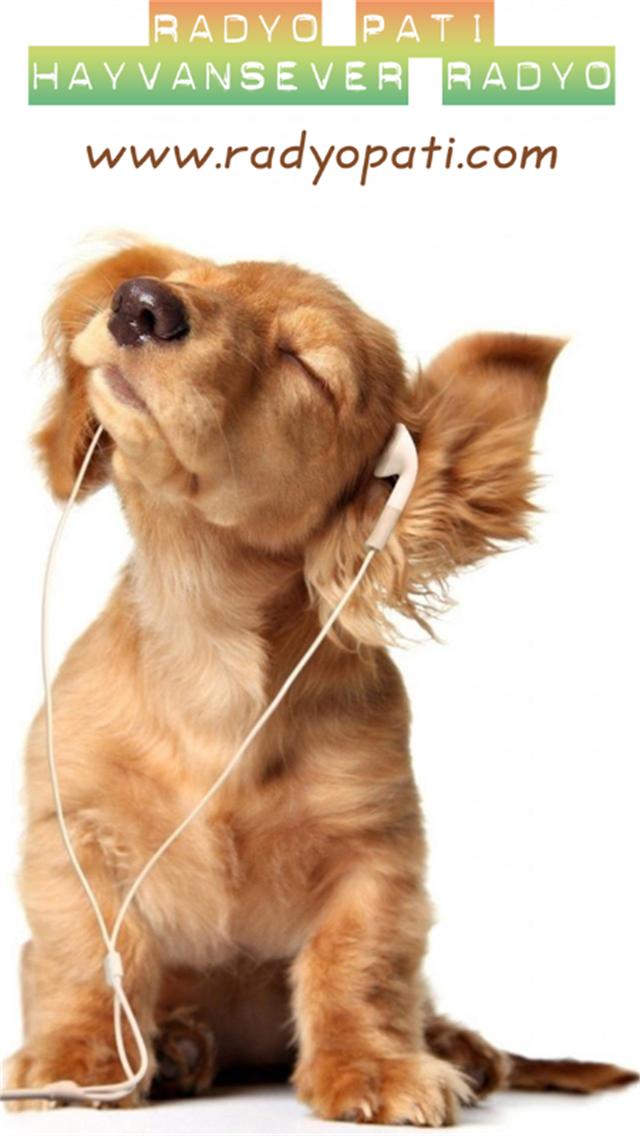 Radyo Pati