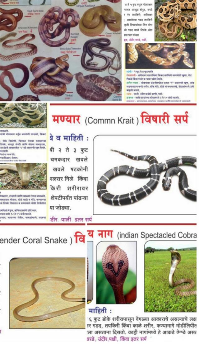 Sarpamitra nagpur