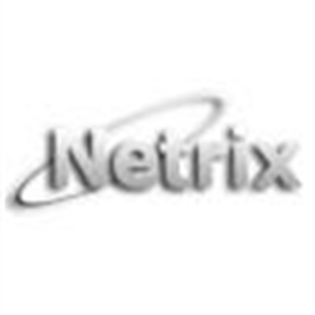 Netrix Teknik