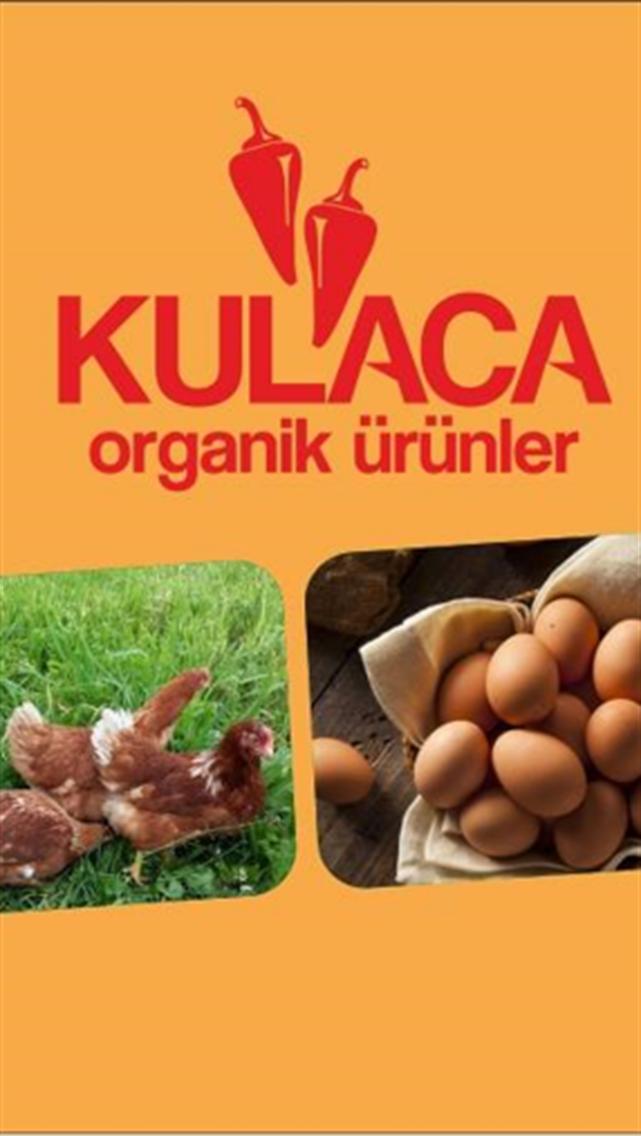 KLC organik