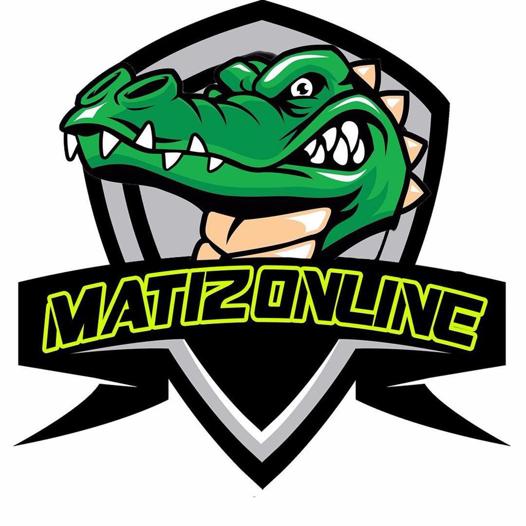 MatizOnline